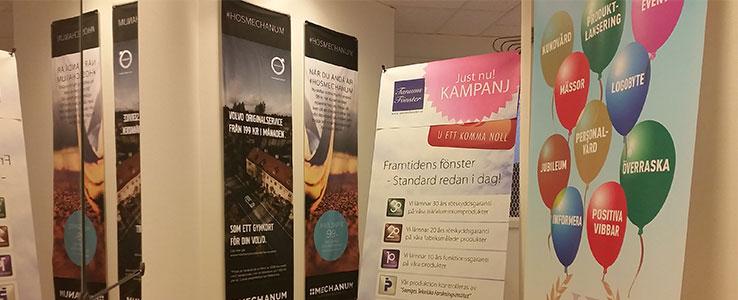 expo-web